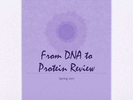 From DNA to Protein Review Spring 2011. 1 pt The units that make up DNA are called? nucleotides.