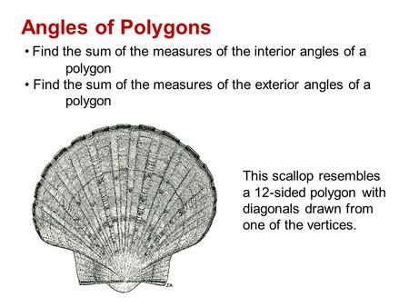 8 1 Find Angle Measures In Polygons Ppt Download