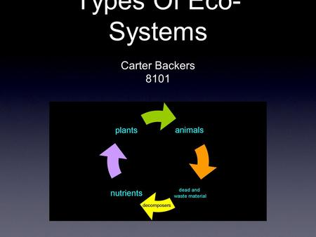 Types Of Eco- Systems Carter Backers 8101. Rain Forests.