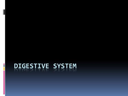  Digestive System – also known as gastrointestinal system  Function: Physical and chemical breakdown of food so it can be taken into the bloodstream.