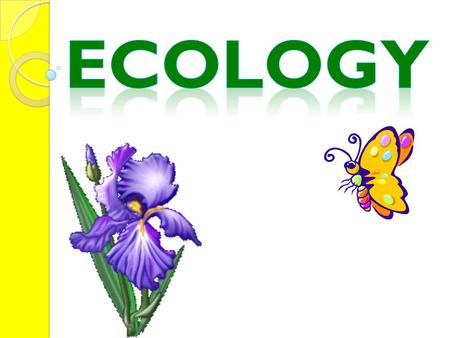 Ecology- The scientific study of interaction between organism and their environments.