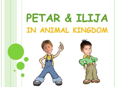 PETAR & ILIJA IN ANIMAL KINGDOM. Hi! My name is Petar. This is my friend Ilija. We love diferent animals. I like lion, but he likes iguana. These are.