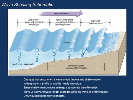 Wave Shoaling Schematic Changes that occur when a wave shoals (moves into shallow water): In deep water = profile of swell is nearly sinusoidal. Enter.
