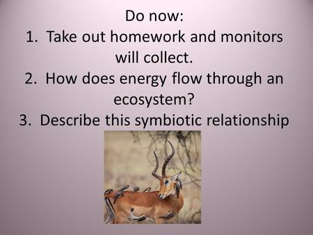 Do now: 1. Take out homework and monitors will collect. 2. How does energy flow through an ecosystem? 3. Describe this symbiotic relationship.