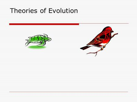 Theories of Evolution. Lamarck's Explanation (1744-1829)  Hypothesized that similar species descended from the same common ancestor  Acquired traits.