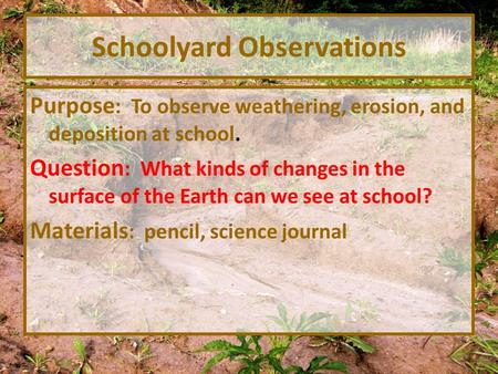 Schoolyard Observations Purpose : To observe weathering, erosion, and deposition at school. Question : What kinds of changes in the surface of the Earth.