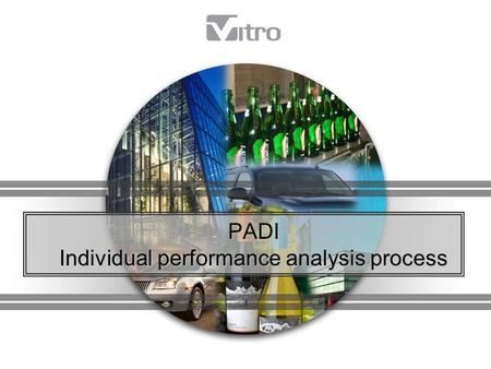 PADI Individual performance analysis process. Guidelines for 2010 Creating your PADI: Process description PADI Structure Individual Goal Setting Using.