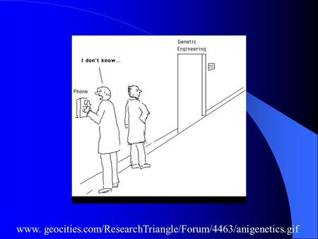 Www. geocities.com/ResearchTriangle/Forum/4463/anigenetics.gif.