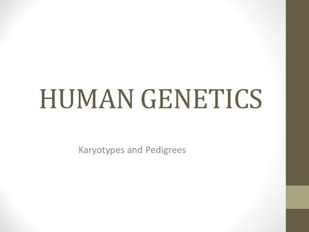 HUMAN GENETICS Karyotypes and Pedigrees. Inheritance of Traits.