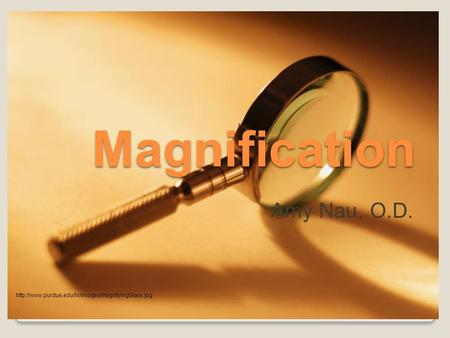 Magnification Amy Nau, O.D.