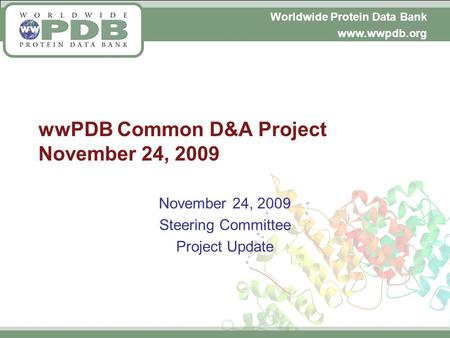 Worldwide Protein Data Bank www.wwpdb.org wwPDB Common D&A Project November 24, 2009 November 24, 2009 Steering Committee Project Update.
