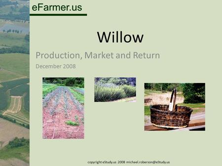 EFarmer.us Willow Production, Market and Return December 2008 copyright eStudy.us 2008