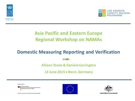 Asia Pacific and Eastern Europe Regional Workshop on NAMAs Domestic Measuring Reporting and Verification Allison Towle & Daniela Carrington 13 June 2015.