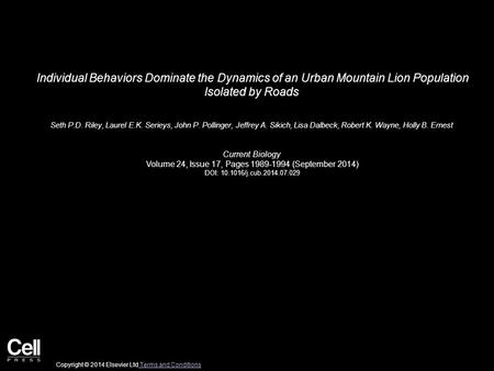 Individual Behaviors Dominate the Dynamics of an Urban Mountain Lion Population Isolated by Roads Seth P.D. Riley, Laurel E.K. Serieys, John P. Pollinger,
