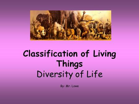 Classification of Living Things Diversity of Life By: Mr. Lowe.