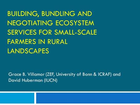BUILDING, BUNDLING AND NEGOTIATING ECOSYSTEM SERVICES FOR SMALL-SCALE FARMERS IN RURAL LANDSCAPES Grace B. Villamor (ZEF, University of Bonn & ICRAF) and.