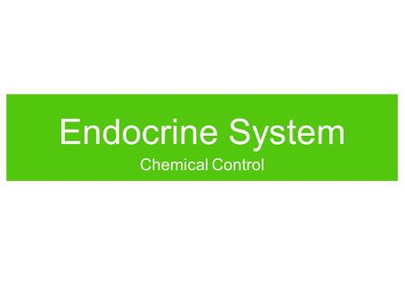 Endocrine System Chemical Control. Messenger Molecules Cells must communicate with one another to coordinate cell processes within tissues and to maintain.