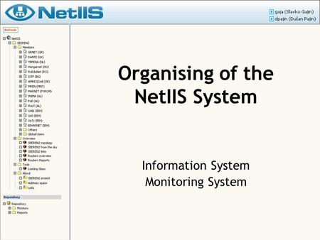 Organising of the NetIIS System Information System Monitoring System.