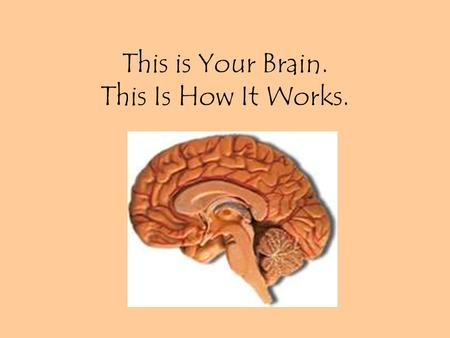 This is Your Brain. This Is How It Works.. Parts of the brain: Keep in mind there are two distinct sides with different functions.