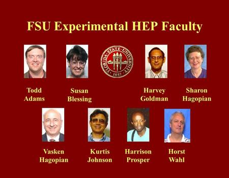 FSU Experimental HEP Faculty Todd Adams Susan Blessing Harvey Goldman S Sharon Hagopian Vasken Hagopian Kurtis Johnson Harrison Prosper Horst Wahl.