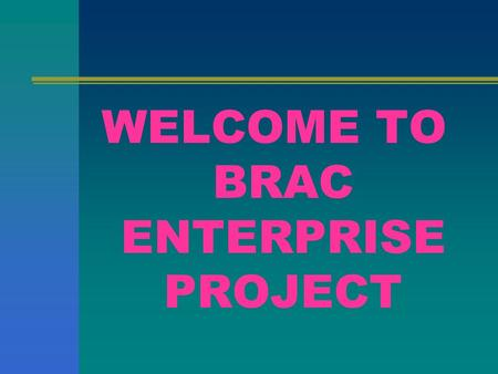 WELCOME TO BRAC ENTERPRISE PROJECT. Rural Economic and Enterprise Development Programme.