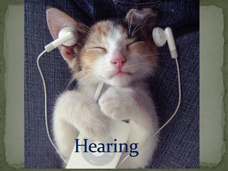 Hearing is the sense by which sound is understood.