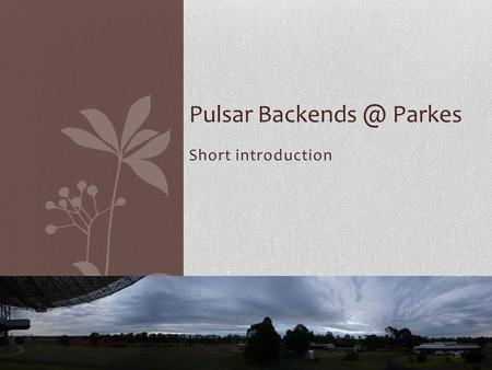 Short introduction Pulsar Parkes. Outline PDFB – Single beam pulsar timing system CASPER – Single beam pulsar coherent dedispersion system.