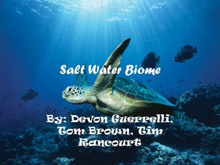 Salt Water Biome By: Devon Guerrelli, Tom Brown, Tim Rancourt.