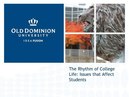The Rhythm of College Life: Issues that Affect Students.