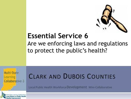 Local Public Health Workforce Development Mini-Collaborative C LARK AND D UBOIS C OUNTIES Essential Service 6 Are we enforcing laws and regulations to.