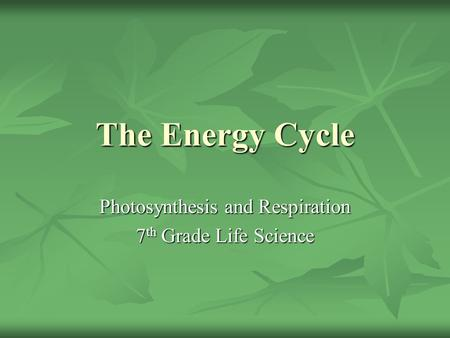 The Energy Cycle Photosynthesis and Respiration 7 th Grade Life Science.