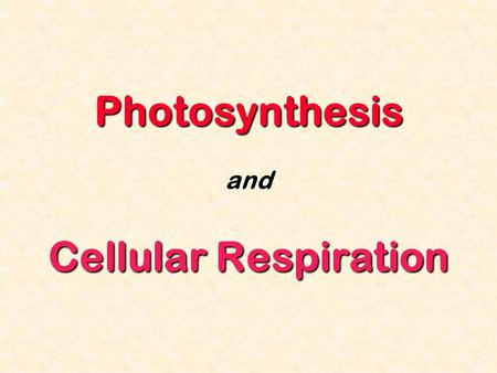 Photosynthesis and Cellular Respiration. All living things depend on energy ATP is used by all cells as their basic energy source Where does this ATP.