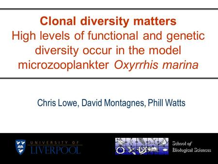 Clonal diversity matters High levels of functional and genetic diversity occur in the model microzooplankter Oxyrrhis marina S chool of B iological S ciences.