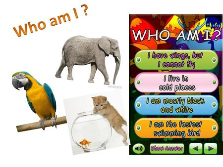 Find out what bird it is and complete the sentences. 1. …. lives in water and likes cold weather. The last letter is 'n'.