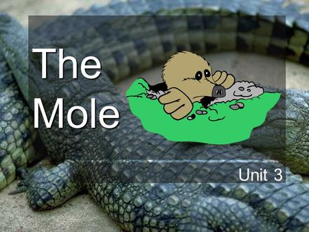 The Mole Unit 3 The Mole So far we have been dealing with numbers on the atomic scale… –Atomic Number = # of protons –Mass Number = # of protons + #