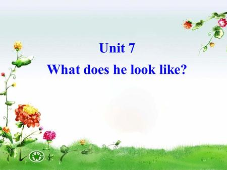 Unit 7 What does he look like?. ear hair eye hand head arm leg foot face back nose mouth ear hair eye hand head arm leg foot face back nose mouth.