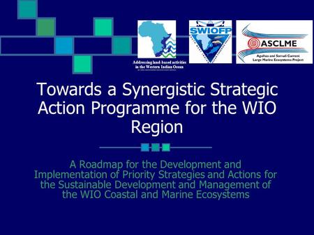 Towards a Synergistic Strategic Action Programme for the WIO Region A Roadmap for the Development and Implementation of Priority Strategies and Actions.