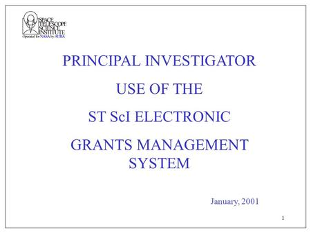 1 PRINCIPAL INVESTIGATOR USE OF THE ST ScI ELECTRONIC GRANTS MANAGEMENT SYSTEM January, 2001.