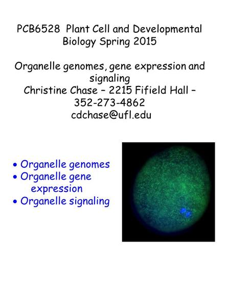PCB6528 Plant Cell and Developmental Biology Spring 2015