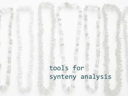 tools for synteny analysis