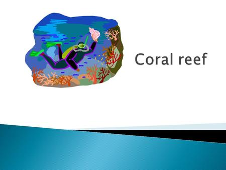  Coast of Australia  The average of a coral reef is 68to82degreesfor the animals to live.