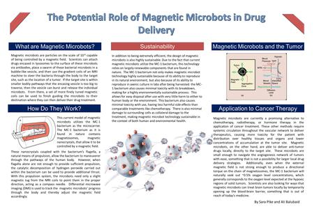 . How Do They Work? By Sara Pike and Ali Balubaid What are Magnetic Microbots?Magnetic Microbots and the Tumor Environment Sustainability Application to.