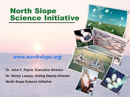 North Slope Science Initiative Dr. John F. Payne, Executive Director Dr. Denny Lassuy, Acting Deputy Director North Slope Science Initiative www.northslope.or.