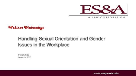 Envision, strategize and actualize Handling Sexual Orientation and Gender Issues in the Workplace Trisha C. Gibo November 2015 Webinar Wednesdays.