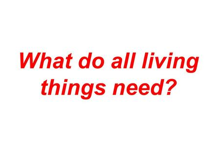 What do all living things need?. Energy! All living things need a constant flow of energy.