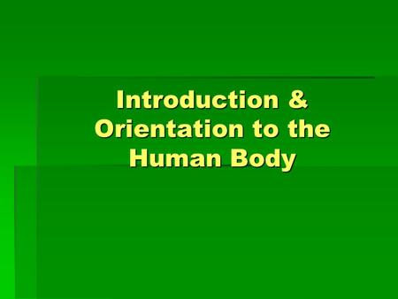 Introduction & Orientation to the Human Body. Anatomy  Field of study that describes the structure, location, and relationships of body parts.