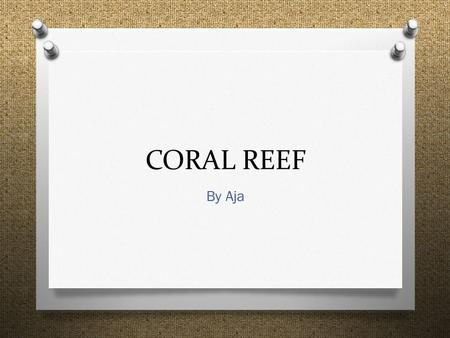 CORAL REEF By Aja. Where can you find coral reef__.