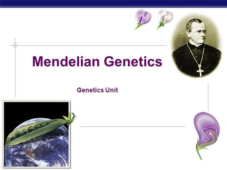 AP Biology Mendelian Genetics Genetics Unit. AP Biology History of Genetics 1. 1865: Gregor Mendel (Austrian monk) presented results of 10 years of experimentation.