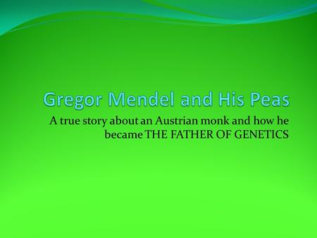 A true story about an Austrian monk and how he became THE FATHER OF GENETICS.