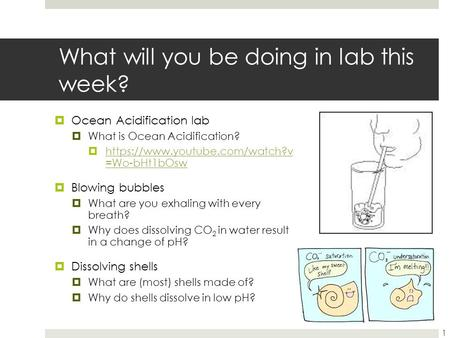 What will you be doing in lab this week?  Ocean Acidification lab  What is Ocean Acidification?  https://www.youtube.com/watch?v =Wo-bHt1bOsw https://www.youtube.com/watch?v.